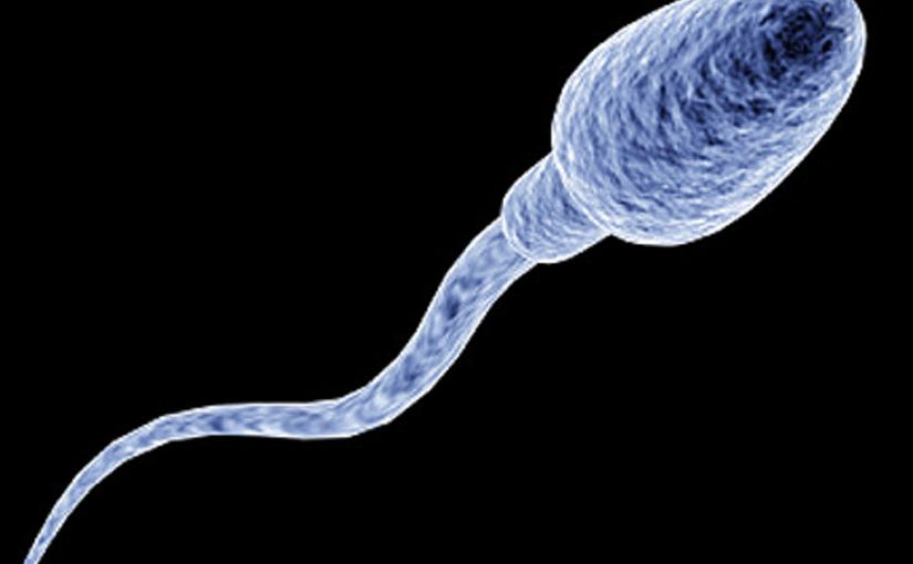 Two to tango: What is male infertility?